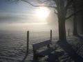 Steindlalleebank im Nebel Marcel(1).jpg